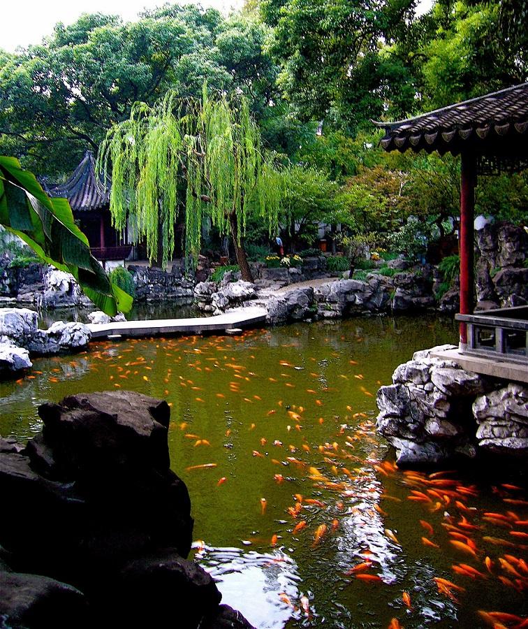 Iaz cu peşti din Grădina Yuyuan