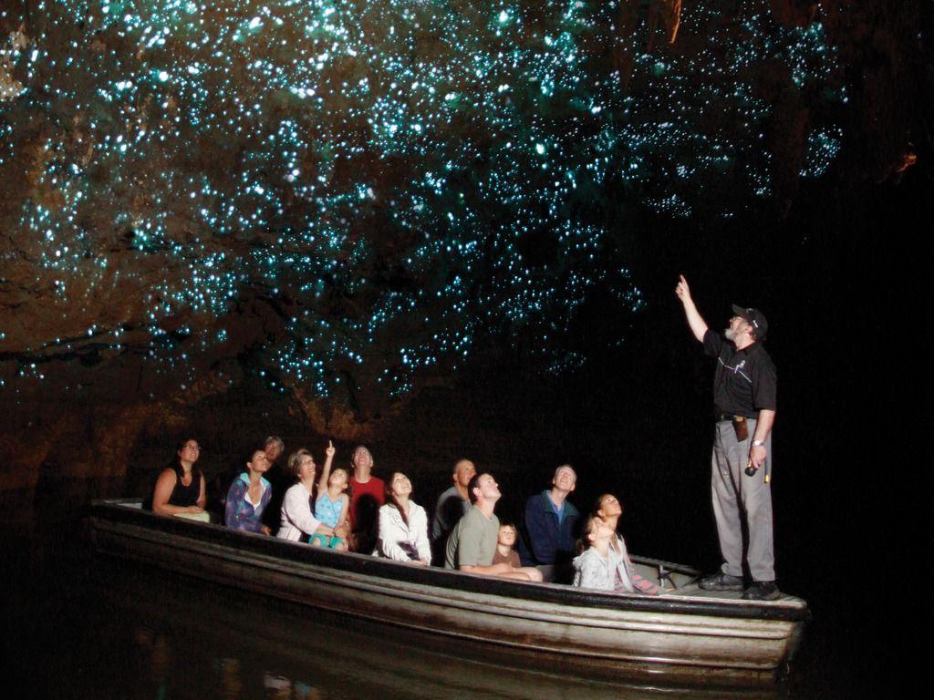 Licuricii pe tavanul peșterii