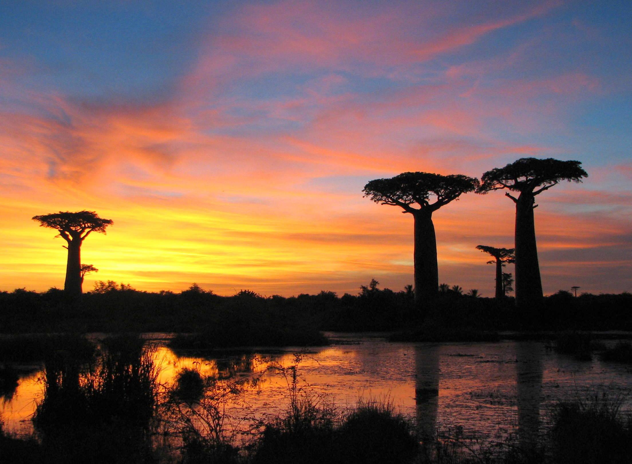 Madagascar în timpul apusului de soare