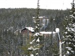 Paltiniș, vilele privite printre vârfurile înghețate ale copacilor
