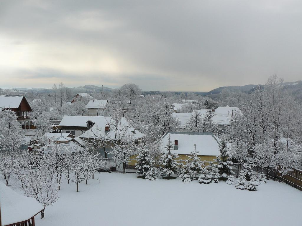 Breaza iarna