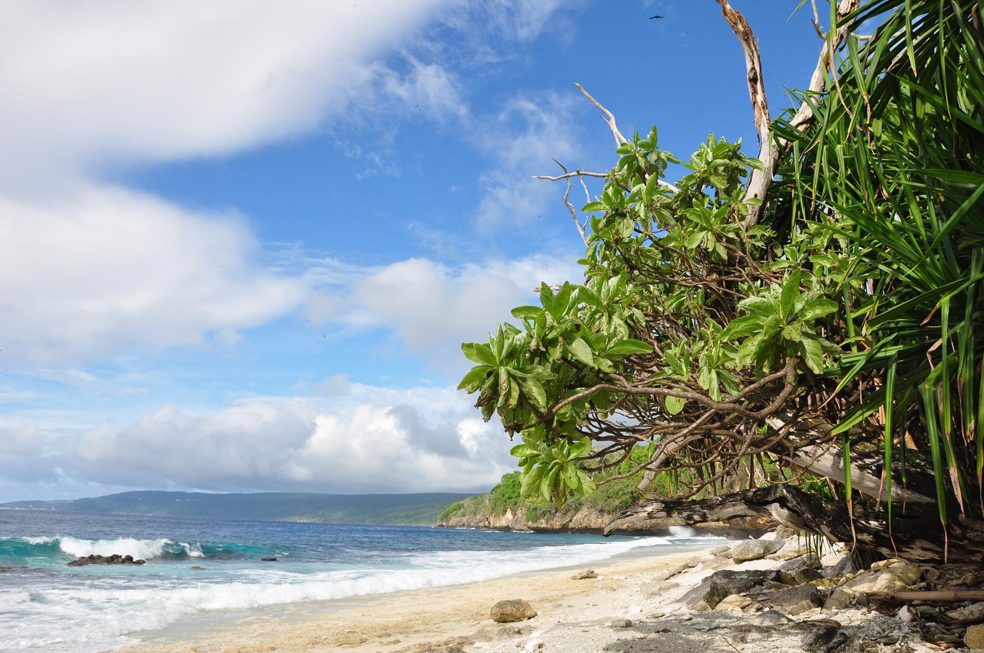 Insula Crăciunului, un spațiu prea puțin atins de mâna omului