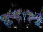 Luminile speranței, Kobe