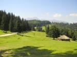 Pârâul Rece, locul ideal pentru lungi plimbări în natură