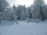 Pârâul Rece iarna