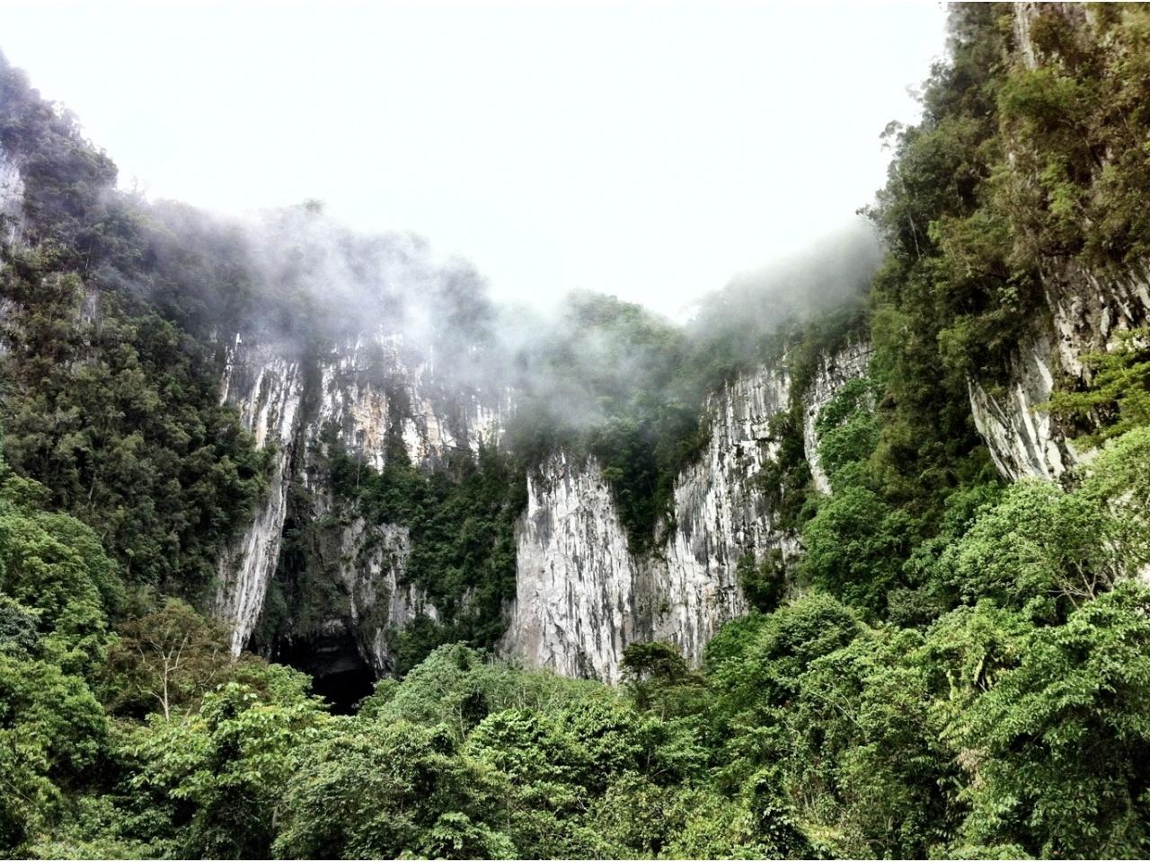 Formațiuni ciudate în Parcul Național Gunung Mulu din Malaezia