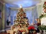 Pomul de Crăciun, simbolul vieții veșnice