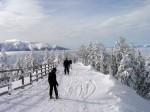 Schi în peisajul de iarnă mirific de la Poiana