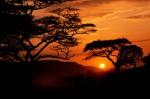 Apus de soare în Serengeti