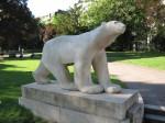 Celebrul urs din Grădina Darcy