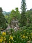 Vegetația și aleile parcului Regaleira
