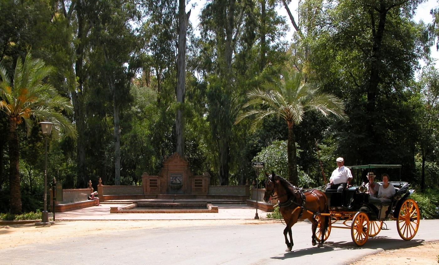 Alee cu portocali din Parcul Maria Luisa