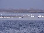 Lacul Bâtca Doamnei, Piatra Neamț - un loc încântător!