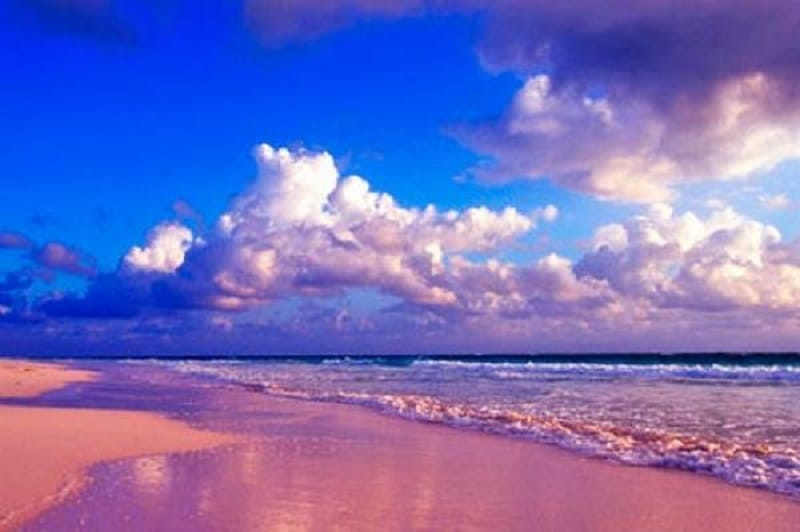 Pink Beach, Komodo National Park, Indonezia