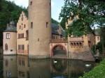 Apele din jurul castelului sunt dominate de prezența lebedelor