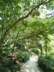 La Promenade Plantée un loc aproape magic