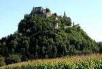 Vegetația bogată evidențiază și mai mult frumusețea castelului