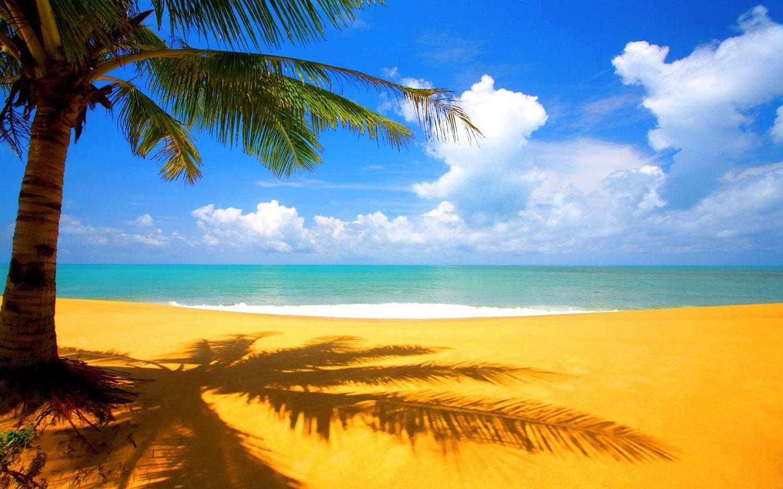 Insula Saint Barthélemy, Marea Caraibelor
