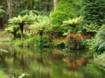 Locuitorii duc o viață liniștită într-un cadru natural de vis