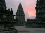 Aleile întortocheate şerpuiesc printre temple