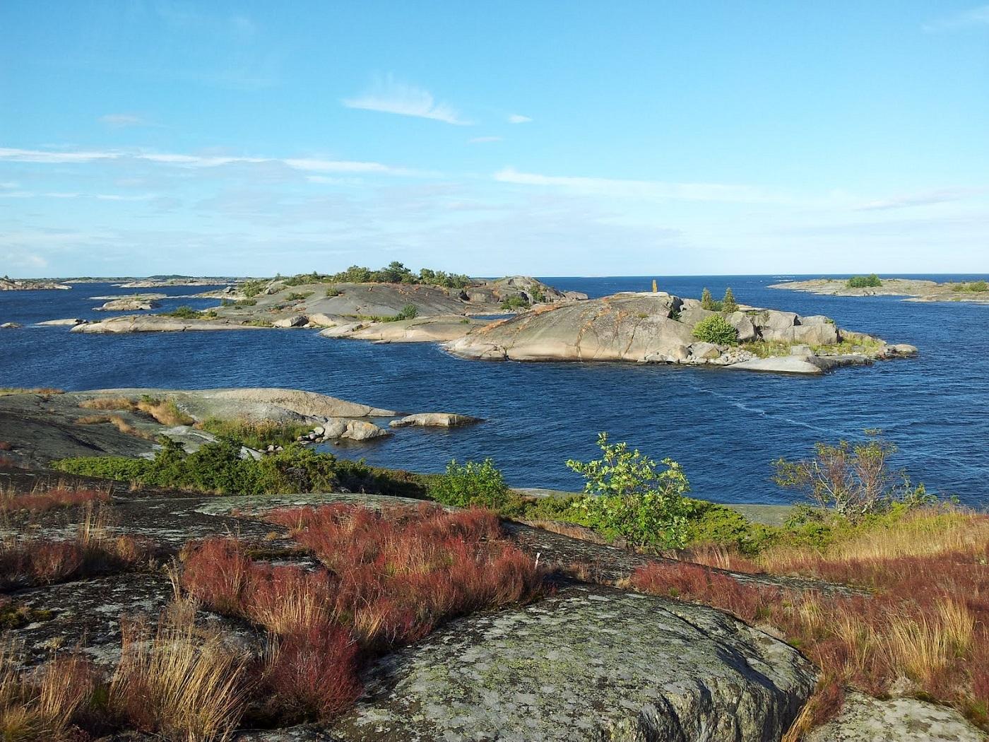 Cormoranii pot fi admiraţi pe insulele mai puţin aglomerate