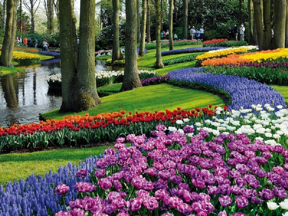 Parcul Keukenhof – Grădina de flori a Europei