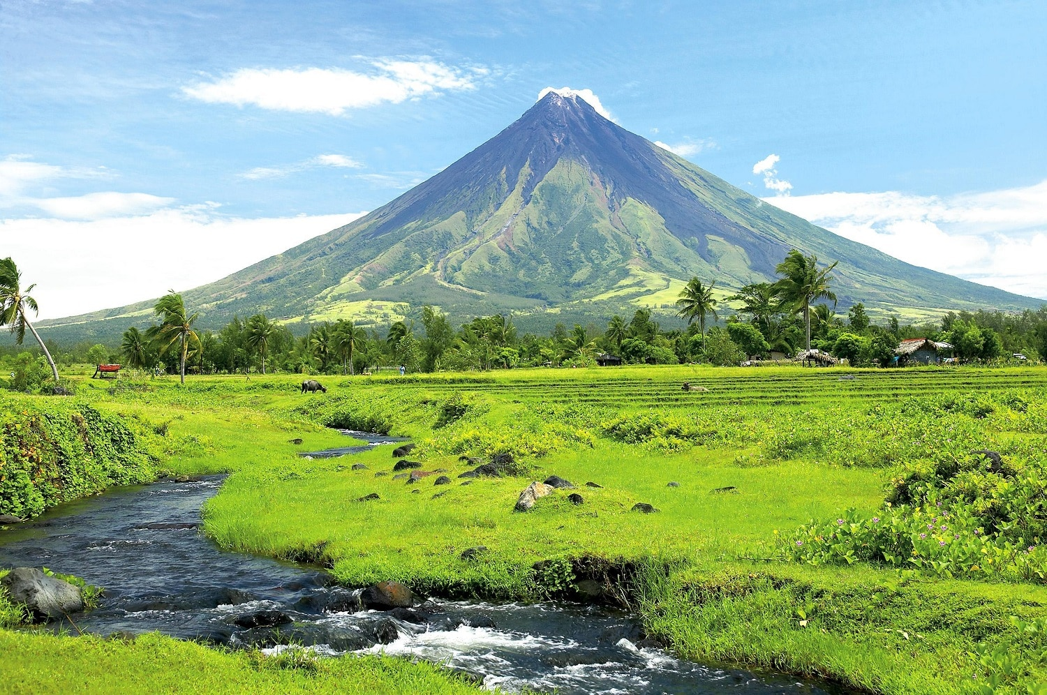 Muntele Mayon, FilipineMuntele Mayon, Filipine